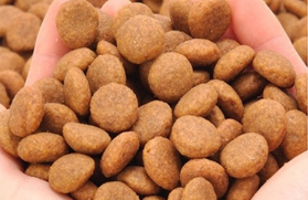 All kinds of mold production of pet food
